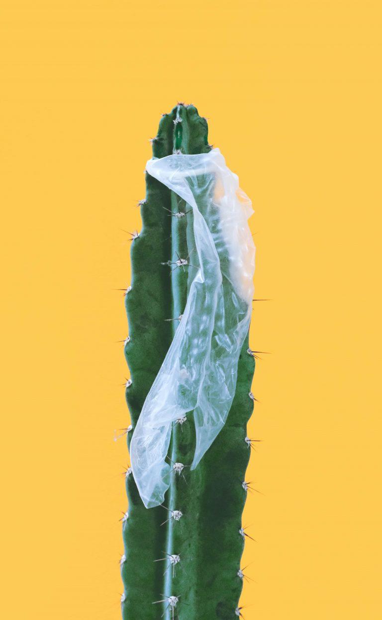 ¿Qué hacer si se te rompe el preservativo? Profilaxis Post Exposición